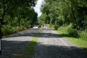 pcrt-Horse-Riding-Trail-for-the-Pine-Creek-Rail-Trail-1